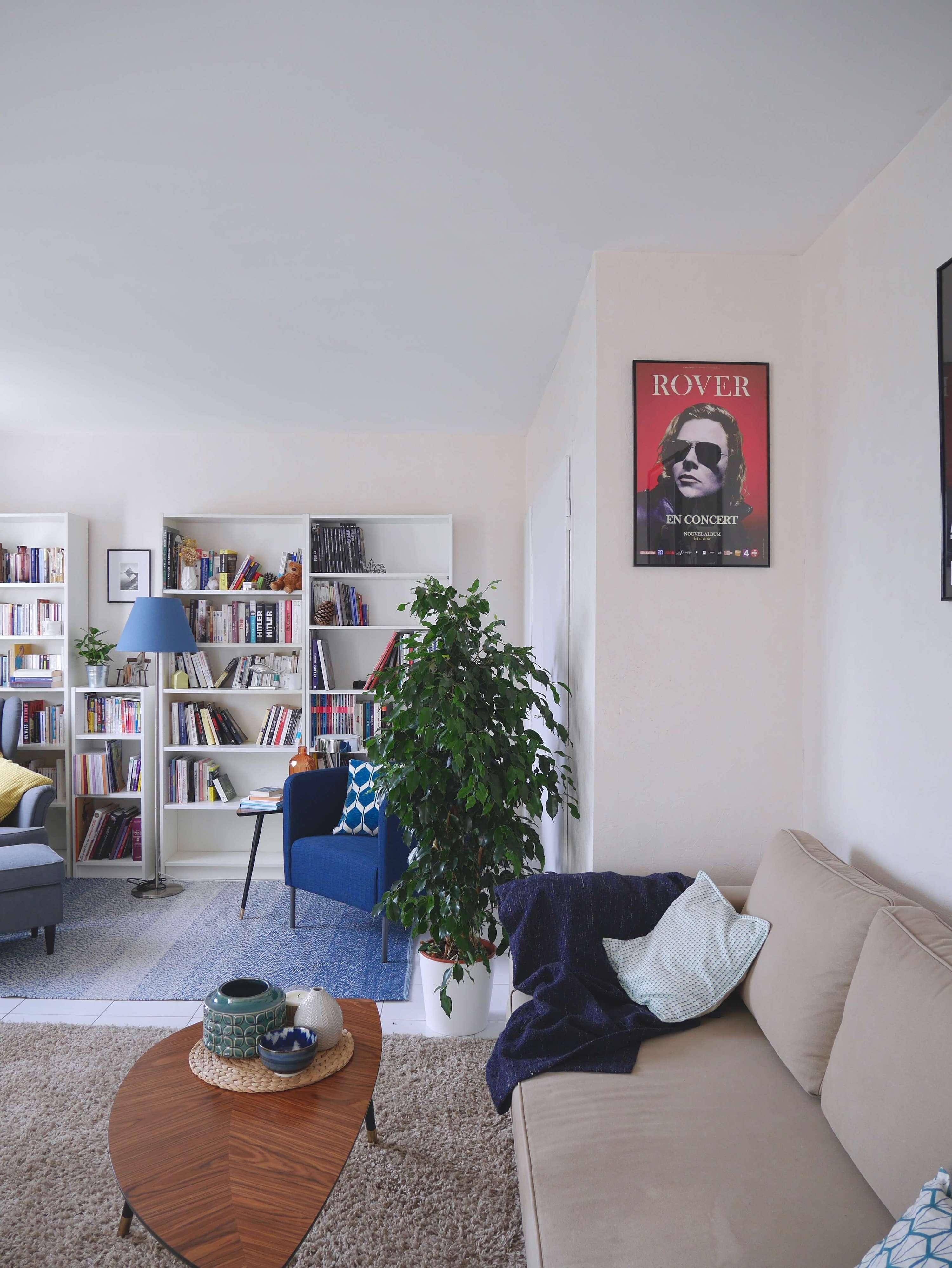 idées décoration salon contemporain