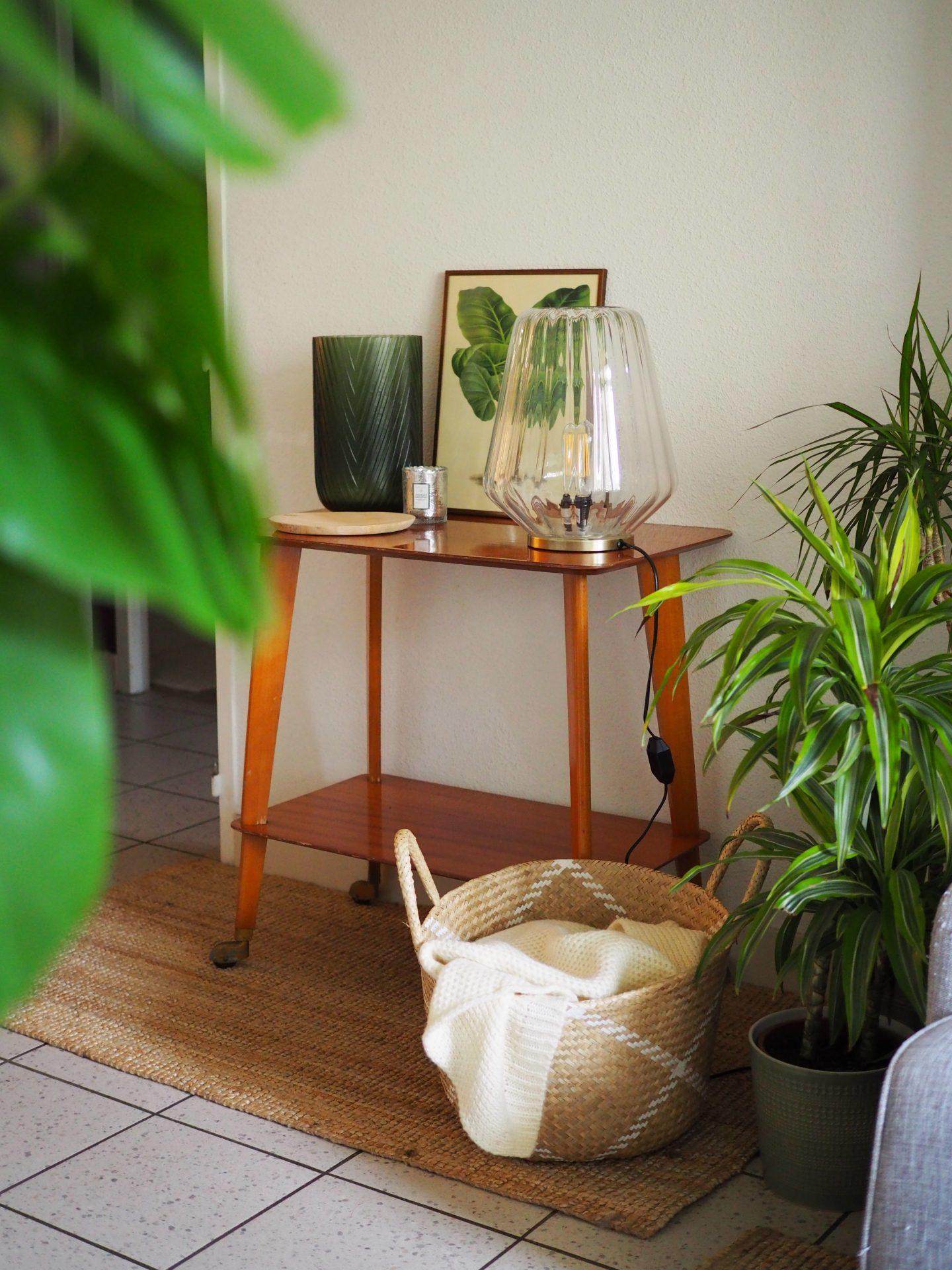 inspiration-deco-plantes