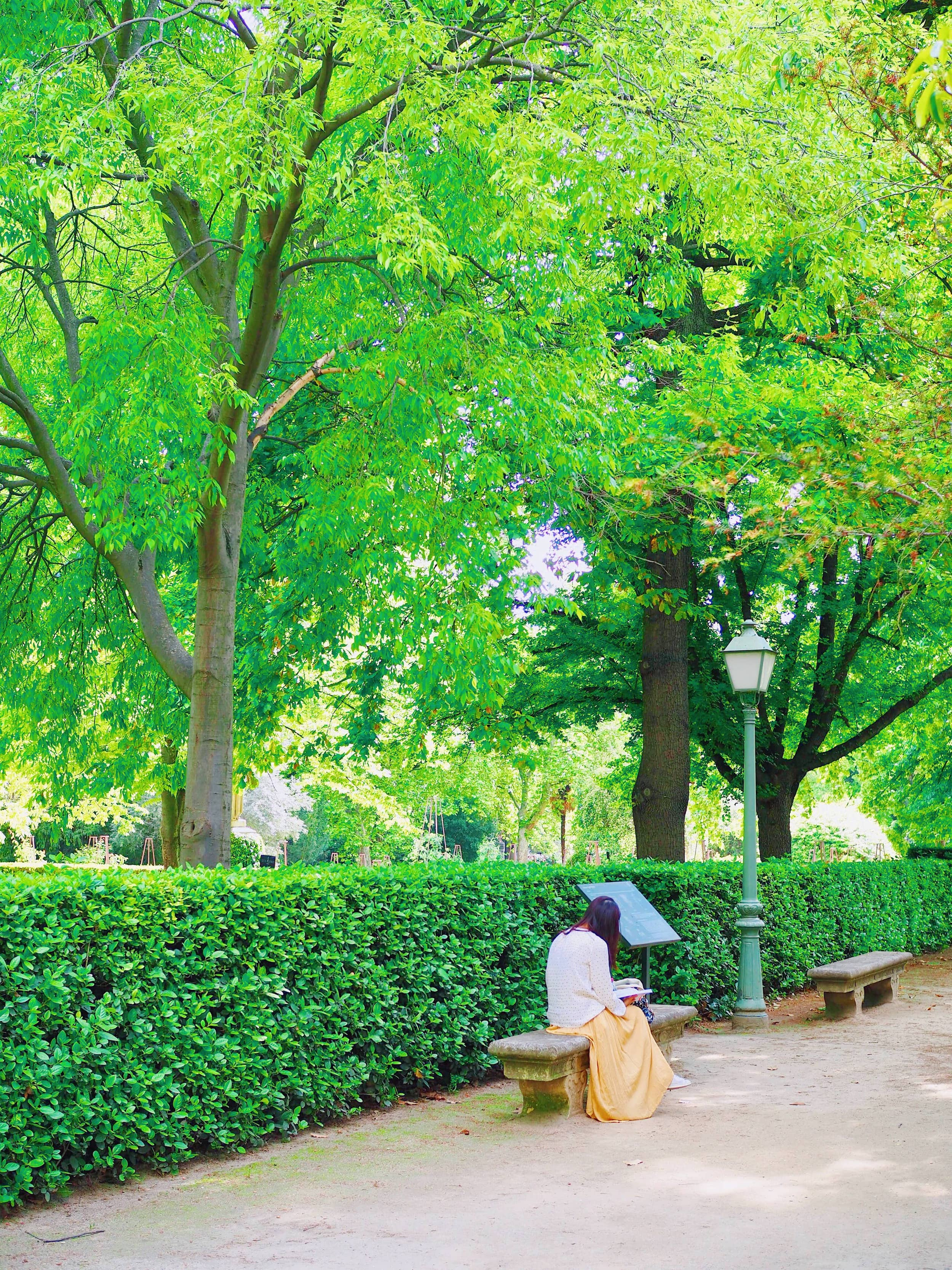 jardin-près-du-prado