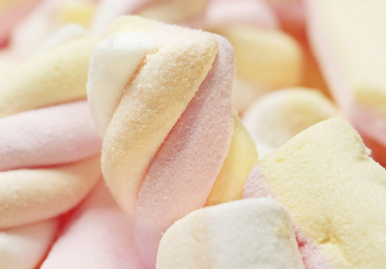 arret-du-sucre